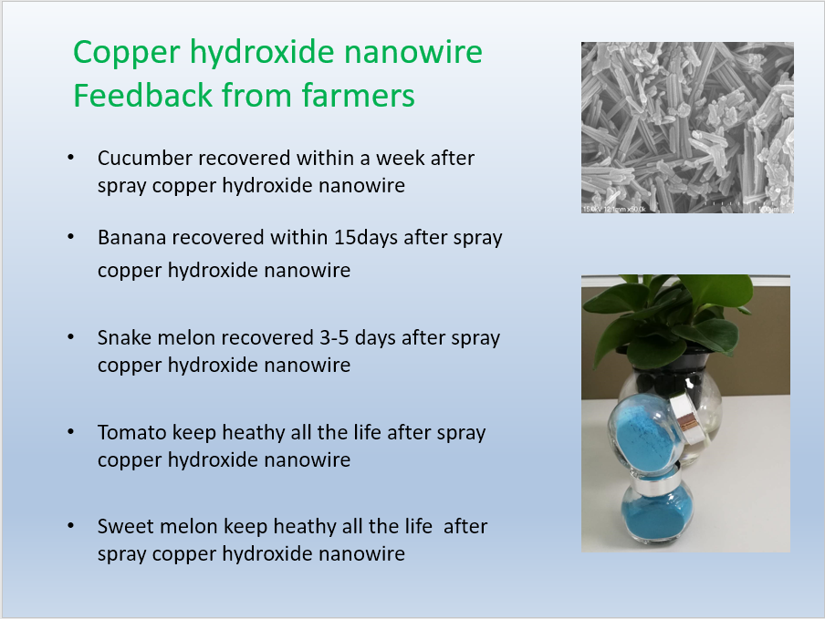 Copper Hydroxide Nanowire Feedback from Farmers
